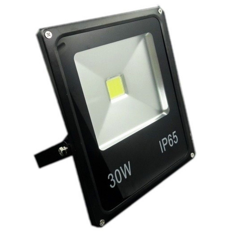 30 Watt Commercial Colored LED Flood Light
