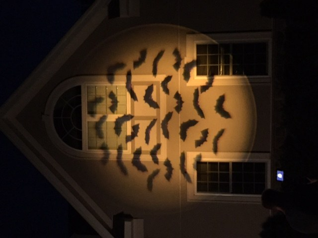 Mr. Christmas Lightshow Projector with Motion and 20 Discs